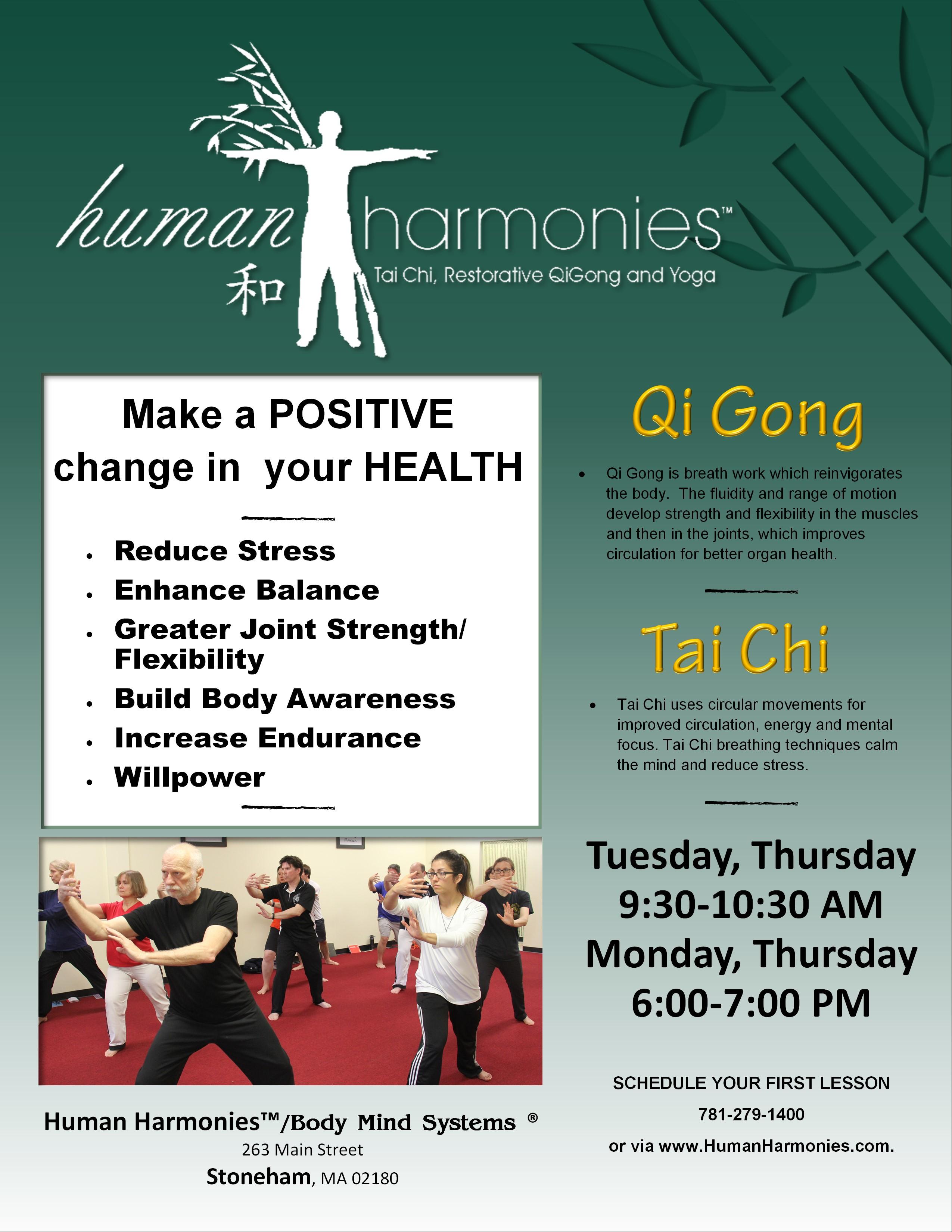 Tai Chi/Qi Gong Lessons